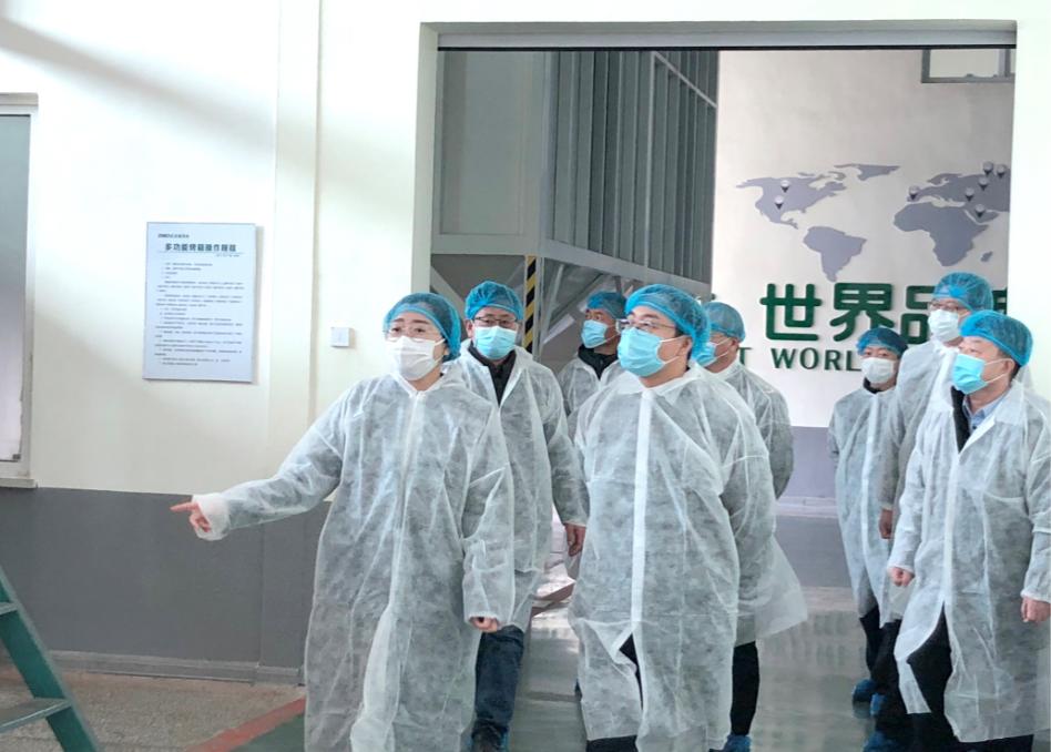 葫芦岛、兴城两市领导莅临long8官网花生产业调研指导